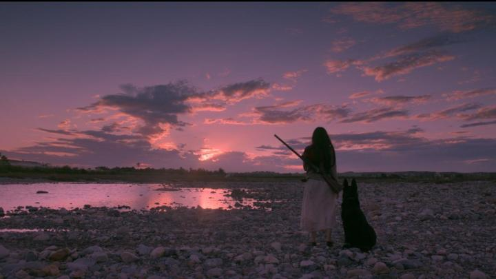 Birdshot – Review